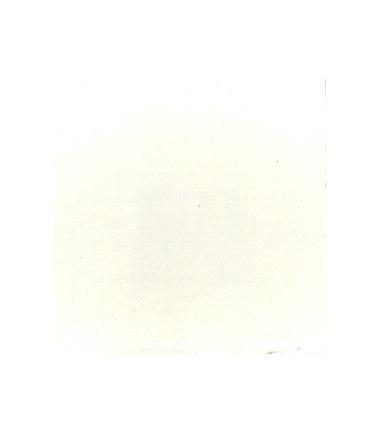 BIANCO uso SAN GIOVANNI - conf. 750 g